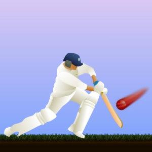 Cricket Batting Practice